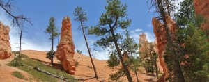 Bryce canyon vue