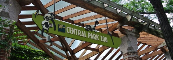 Zoo central park