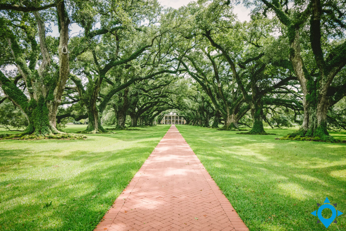 Oak Alley plantations Louisiane