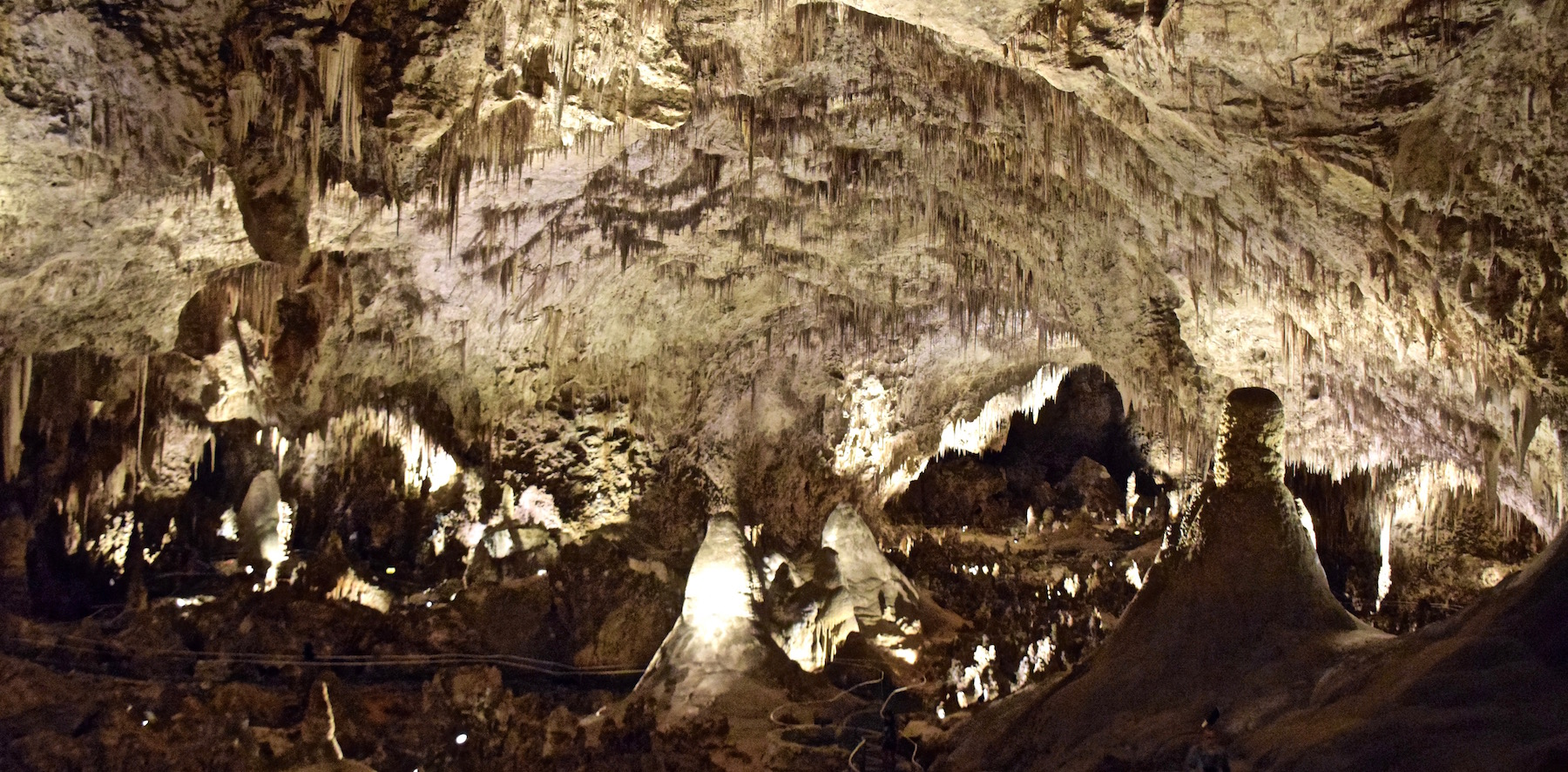 parc national de carlsbad caverns