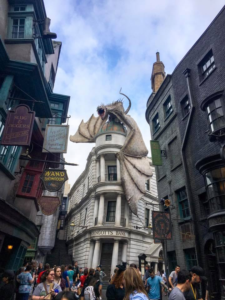 harry potter floride
