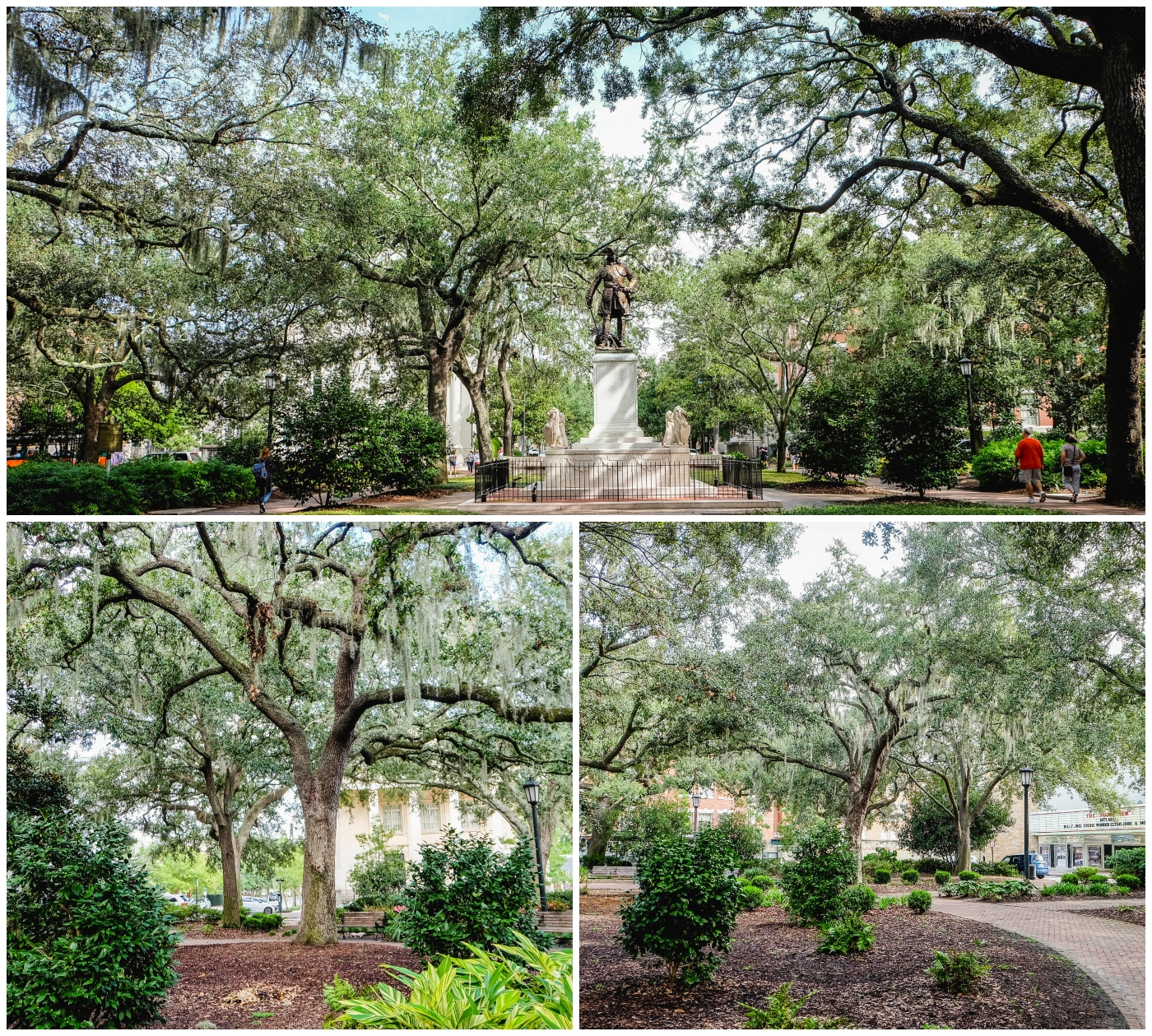 square savannah